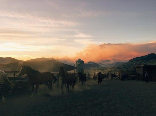 ashcroft bc wildfire