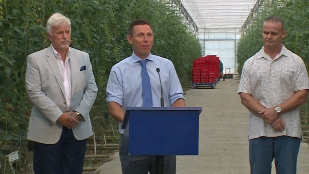 Ontario PC leader Patrick Brown promised rebates and criticized the Liberal cap-and-trade program during a visit to a Kingsville greenhouse operation Monday.