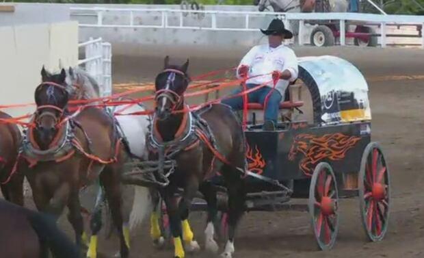 roger moore team chuckwagon race horse death