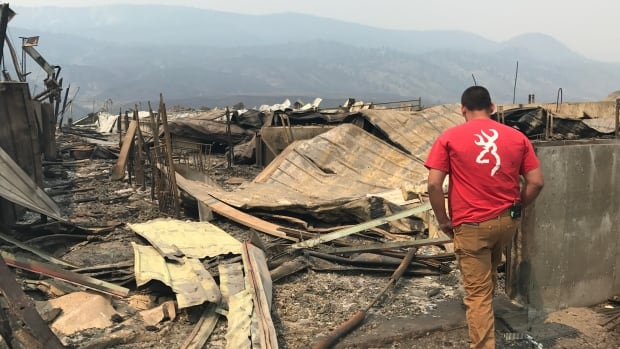 Rob Donaldson looks upon his devastated Ashcroft-area farm, burnt in one of the  wildfires that raged across B.C. in early July. The CEO of the B.C. Economic Development Association says many business owners are anxious about what the fires mean for their futures.