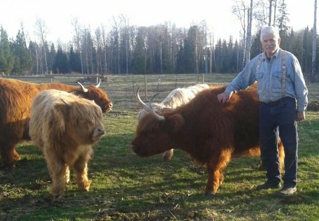 Santino Marazzo, Horsefly Rancher