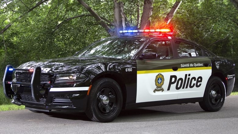 schwarzweiss-polizeiwagenbild