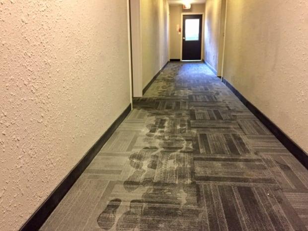 Donna Baskin hallway
