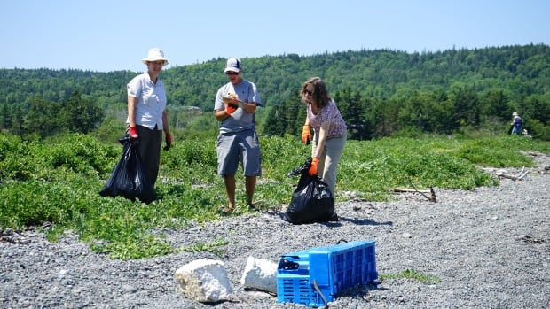 Volunteers collect data and debris from Meredith Houseworth Memorial Seashore on Grand Manan last year.