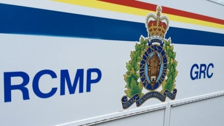 Toy gun arrest prompts warning about fake firearms from Iqaluit RCMP