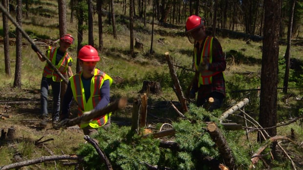 Mitigating disaster: teens spend summer in forest preventing wildfires