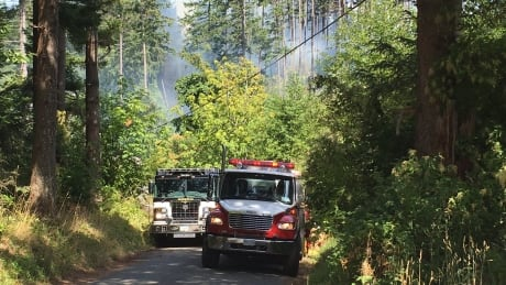 Comox brush fire