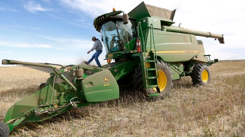 Sask  harvest inching closer to completion: crop report