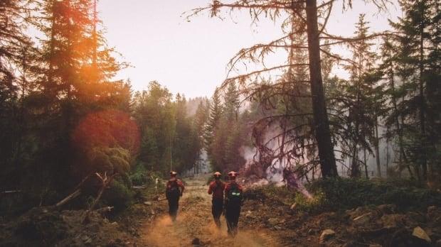 firefighter b.c. fire