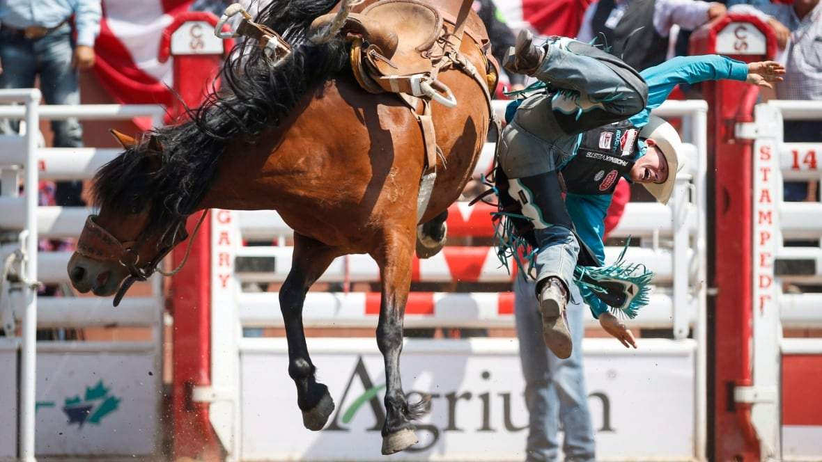 Calgary Stampede 2017 Attendance Tops 1 2m Calgary Cbc