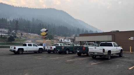 Williams Lake, B.C., residents cleared to return home after wildfire forces evacuation
