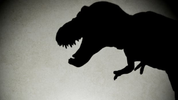 Researchers conclude T. Rex couldn't run, walked instead