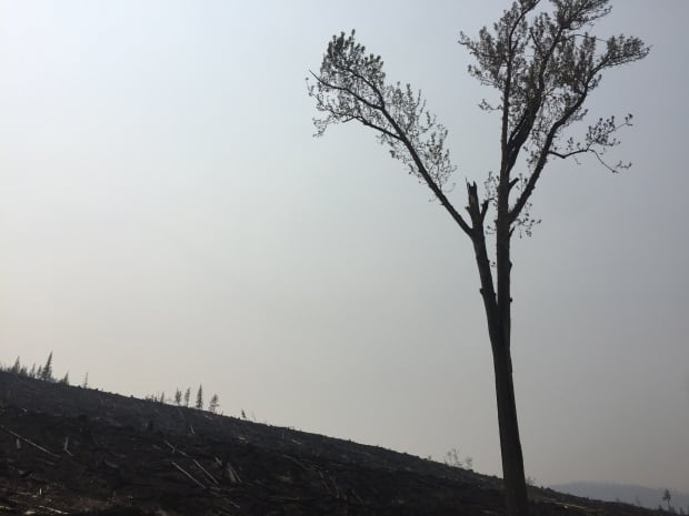 BC Fires 2017 - Green Mountain Fire