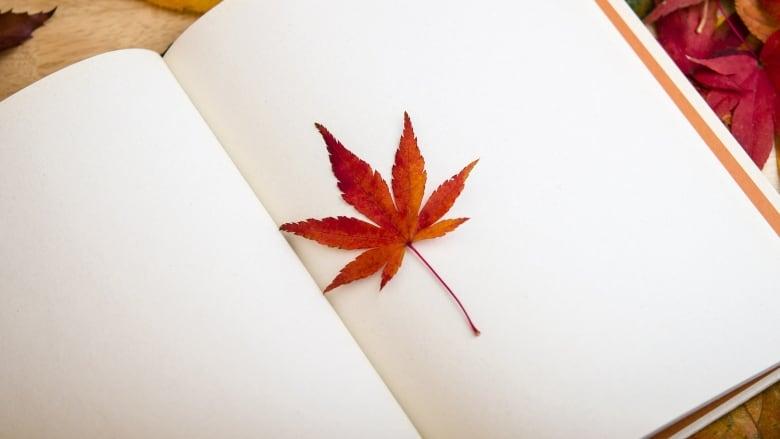 Maple Leaf book