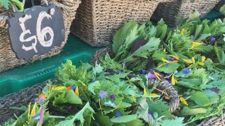 Fireweed Market