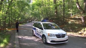 Man dies after fall near Mount Royal lookout