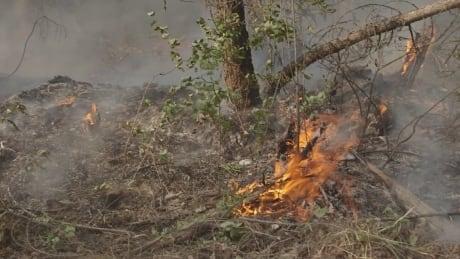 bc wildfires spot fire soda creek