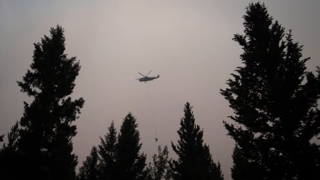Wildfires BC 20170708