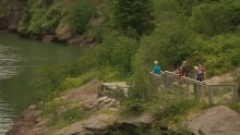 Visitor numbers, Fundy National Park