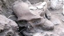 Mayan bones