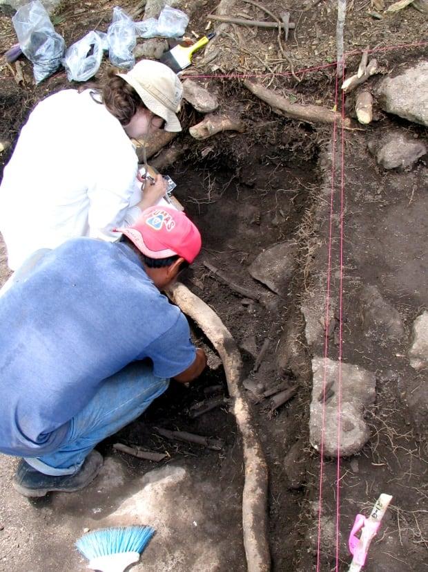 Mayan bones University of Calgary
