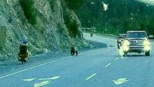 Grizzly chase cyclist