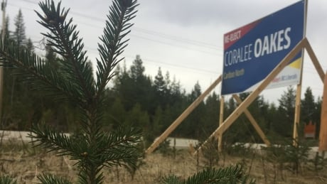 New rules limit election signs in Prince George, B.C.