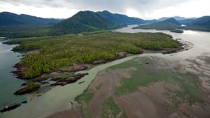 Pacific NorthWest LNG project in Port Edward, B.C., no longer proceeding