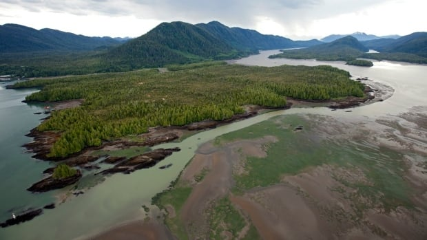 Petronas pulls out of Pacific Northwest LNG project