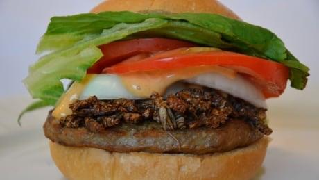 Cricket burger
