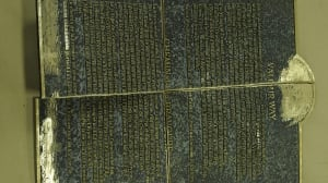 damaged plaques
