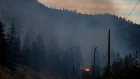 Monte Lake fire