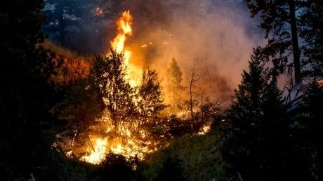 Monte Lake wildfire