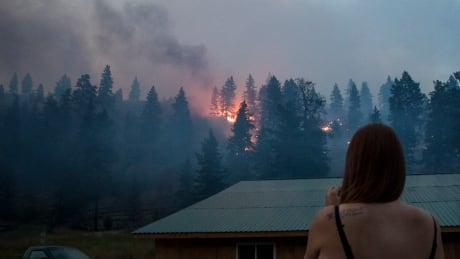 Witness to Monte Lake wildfire believes flicked cigarette butt to blame