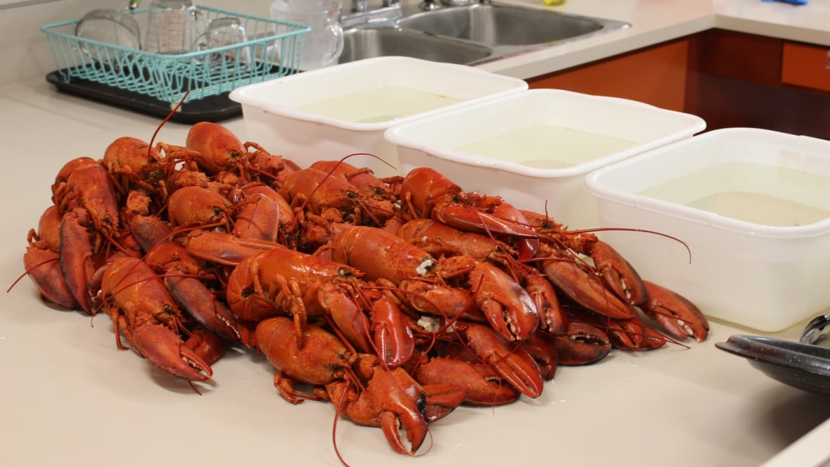 Swiss ban against boiling lobster alive brings smiles — at first