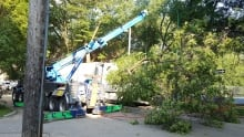 Truck takes out tree on Assiniboine Avenue