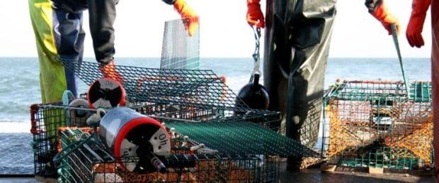 Grand Manan Fishermen Association