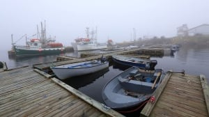 2 dead after boat en route to wedding capsizes off Quebec's Lower North Shore