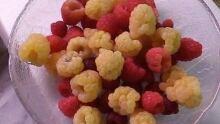 mixed raspberries