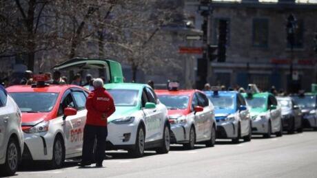 Taxi fleet bonjour
