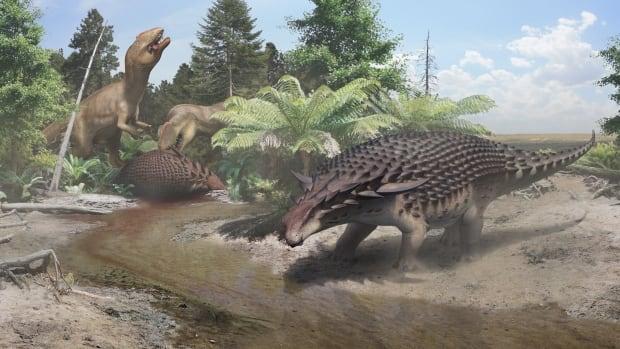An illustration of the 110-million-year-old Borealopelta markmitchelli, discovered in Alberta.