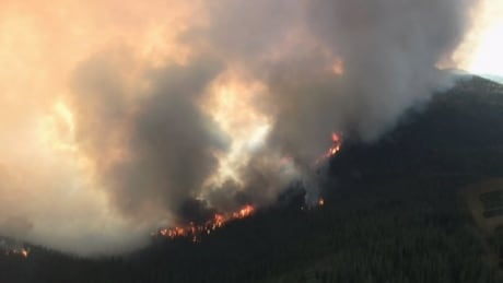 Harrop Creek Fire