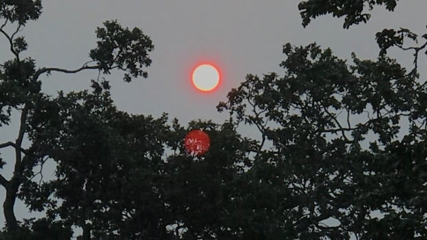 Smoke from wildfires is blocking out the sun's rays in parts of the South Coast, which may temper the Environment Canada forecast for heat this week.
