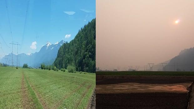 Smoke comparison