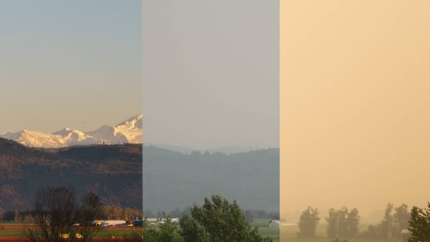 On a normal summer's day, Mount Baker in Washington State is visible from Abbotsford, B.C. In August, the mountains were obscured by haze caused by wildfire smoke drifting across the province.