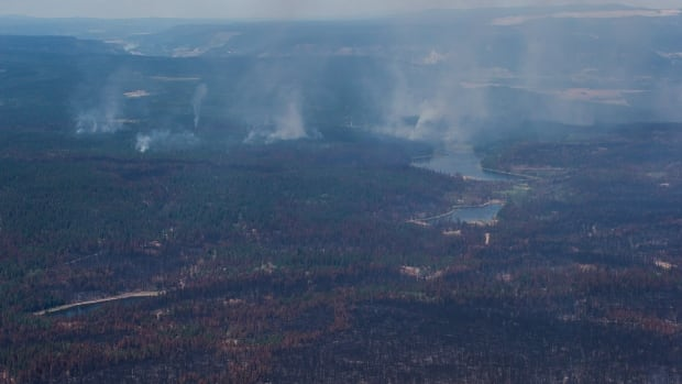 Wildfires near Williams Lake, B.C. Nearly 3,600 square kilometres have burned in B.C.'s Cariboo region.