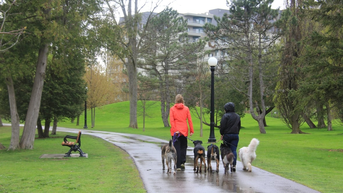 Kitchener Weather: Periodic Showers, Higher Fuel Prices, Fun Events