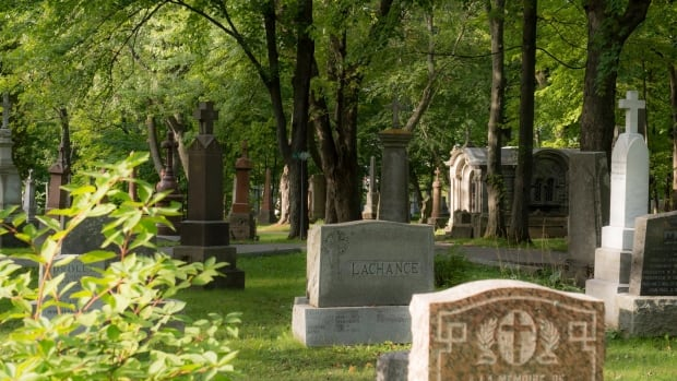 Quebec City to get Muslim cemetery