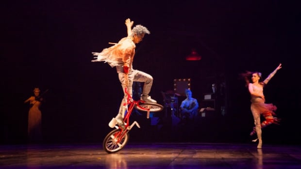 A performer fell during Tuesday night's Volta show in Gatineau, Que., Cirque du Soleil says.