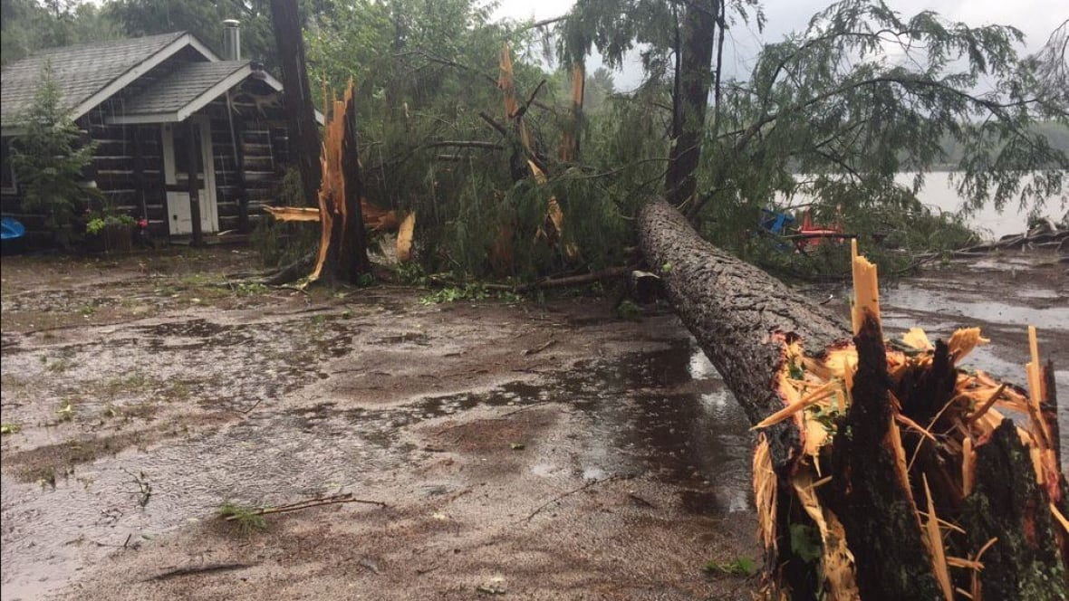 Downed Trees Blocked Roads Damaged Cottages Reported As